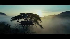 """Кадр из фильма """"Тарзан. Легенда"""""""