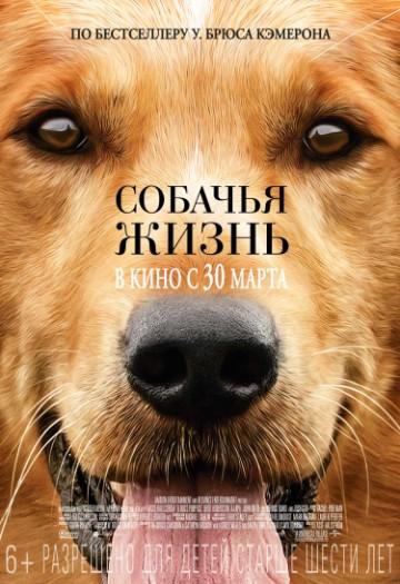 Собачья жизнь КультКино cultofcinema.com