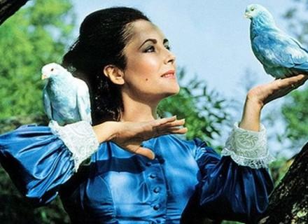 Синяя птица Элизабет Тейлор КультКино cultofcinema.com