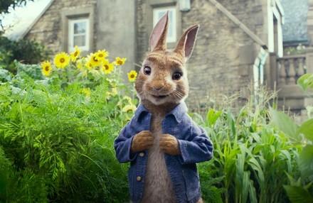 Рецензия на фильм Кролик Питер КультКино cultofcinema.com