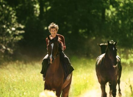 Рецензия на фильм Угоняя лошадей КультКино cultofcinema.com