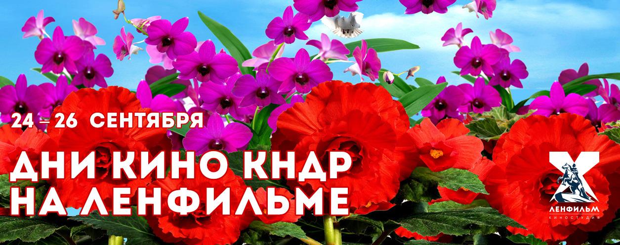 Фестиваль кино Северной Кореи КультКино cultofcinema.com